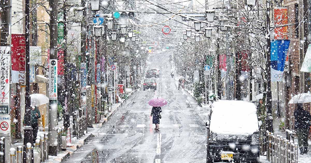 โตเกียว หวานๆ ในวันที่หิมะหลงฤดู มาเจอซากุระกำลังผลิบาน