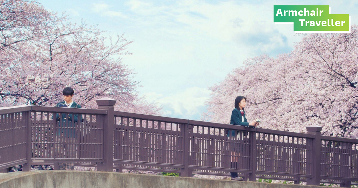 เก็บลิสต์หนัง ซากุระ สุดโรแมนติก ชุบหัวใจช่วง Social Distancing
