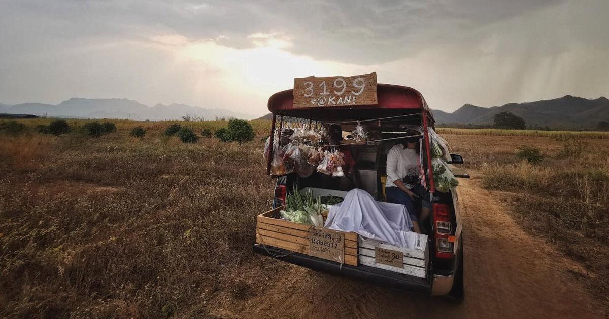 พักรีสอร์ตแล้วออกสตาร์ต รถพุ่มพวง 3199 ส่งอาหาร ถึงชุมชนและผู้สูงอายุ