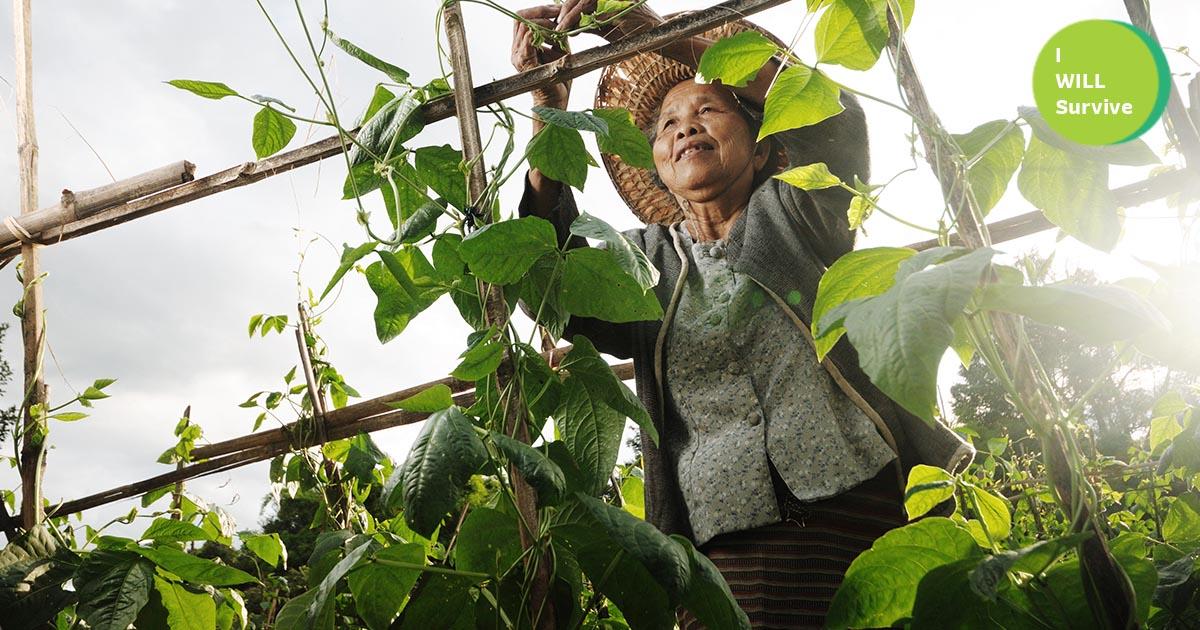 พลิก วิกฤตโควิด-19 เป็นโอกาส ส่งตรงผัก ผลไม้สดจากเกษตรกรถึงบ้าน ไม่ต้องตุน