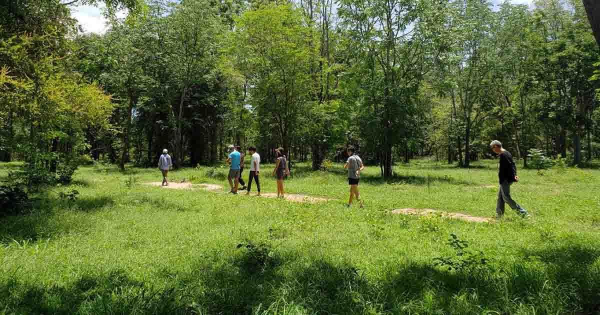 อาบป่า ท่ามกลางอ้อมกอดของผืนป่าชุมชนกาญจนบุรี