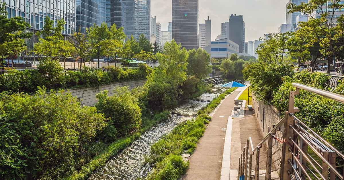 คลองชองกเยชอน ต้นแบบการฟื้นชีวิตคลองโบราณ สร้างพื้นที่แบ่งปันให้คนเมือง