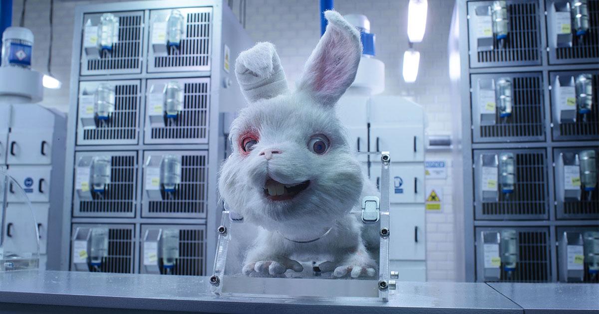ทำไมใครๆ ต้อง Save Ralph แคมเปญยุติการใช้สัตว์ทดลองในอุตสาหกรรมเครื่องสำอาง